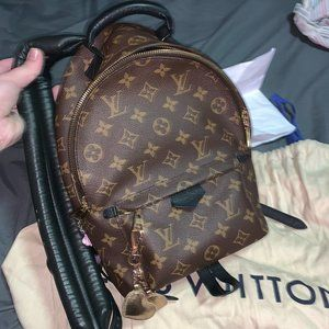 Hard to Find Louis Vuitton Palm Springs MM